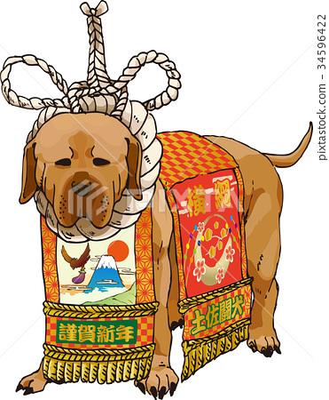 相撲選手的纏腰帶 毛孩 狗 34596422