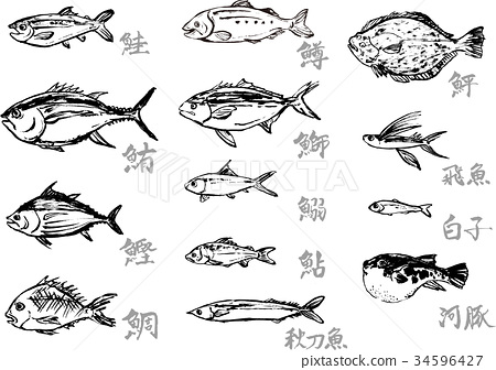 手绘 鱼 中国汉字 34596427