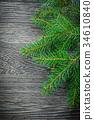branch, pine, tree 34610840