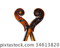 a violin image on the white background 34613820