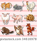 animal cute sticker 34616978
