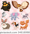 Sticker design for wild animals on pink background 34616998