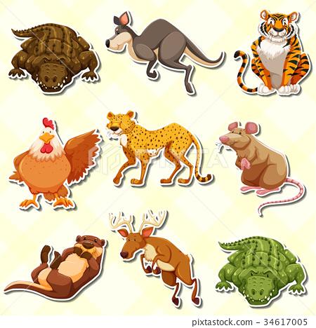 Sticker set with many animals 34617005