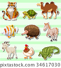 Sticker set with wild animals 34617030