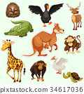 Sticker design with animals on green 34617036