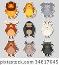 一组 一套 动物 34617045