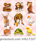 Sticker set with reptiles and other animals 34617207