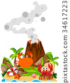 Crabs and volcano on island 34617223