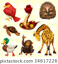 Sticker design for animals with happy face 34617226