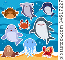 Sticker design with cute sea animals 34617227