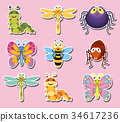 Sticker design with cute bugs and insects 34617236