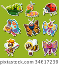 Sticker design for different kinds of insects 34617239
