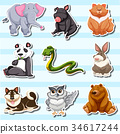 Sticker design with many wildlife creatures 34617244