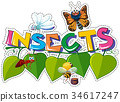 Sticker design for word insects with many bugs 34617247