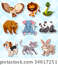 set, animal, sticker 34617251
