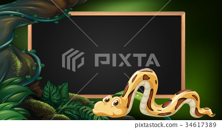 Blackboard with snake in jungle as background 34617389