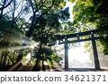 Meiji Jingu Shrine Otorii in the early morning 34621371