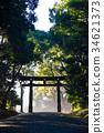 meiji shrine, Torii Gate, torii 34621373