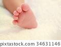新生儿 婴儿 宝宝 34631146