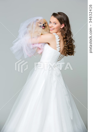 beautiful bride girl with spitz bride on gray 34632416