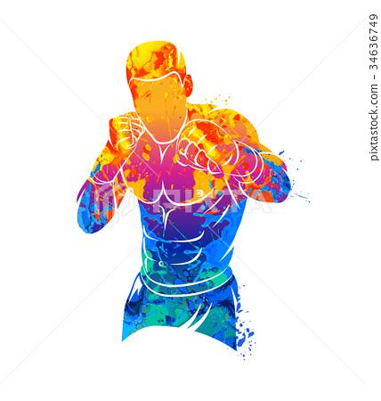 Mixed Martial Art 34636749