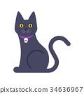 动物 猫 猫咪 34636967