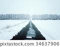 斯诺伊森林,冬天风景。 34637906