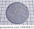 Manhole cover of Kochi city, Japan. 34646822