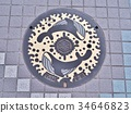 Manhole cover of Kochi city, Japan. 34646823
