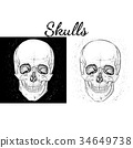 vector skeleton black 34649738