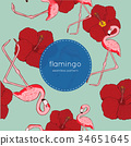 flamingo, pattern, vector 34651645