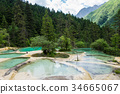 Guests welcome pond during summer 34665067