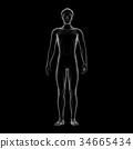 男性 男 男人 34665434