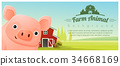 Rural landscape and Farm animal with pig 34668169