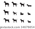 Set of vector dog breeds silhouettes ,Vector 34676654