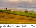 비에이 언덕, 비에이노오카, 밭 34680257