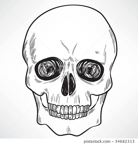 Human Skull 34682313