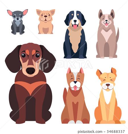Cute Purebred Dogs Cartoon Flat Vectors Icons Set 34688337