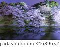 chidorigafuchi, cherry blossom, cherry tree 34689652