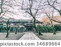chidorigafuchi, yasukuni shrine, cherry blossom 34689664