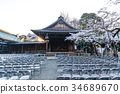 chidorigafuchi, yasukuni shrine, cherry blossom 34689670