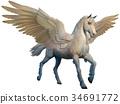 Pegasus 34691772