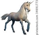 Unicorn 34691773