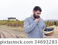 Chateau Vineyard Hat Grapes Crop Man Autumn 34693283