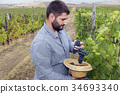Man Hat Grapes Harvest Vineyard Secateurs Autumn 34693340