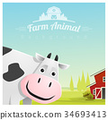 Farm animal and Rural landscape with cow 34693413