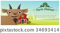 animal, goat, farm 34693414