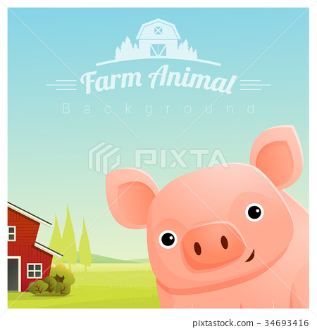 Farm animal and Rural landscape with pig 34693416