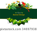 tropical leaves and animal 34697938