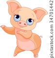 Pig Dance 34701442